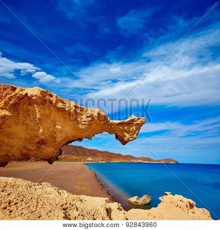 Almeria in Cabo de Gata Playa del Arco arch beach at Spain