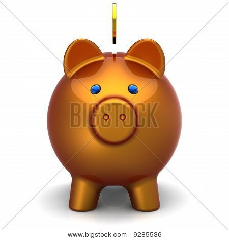 Piggy bank face (Hi-Res)
