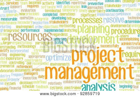 Project Management or a Project Manager as Concept