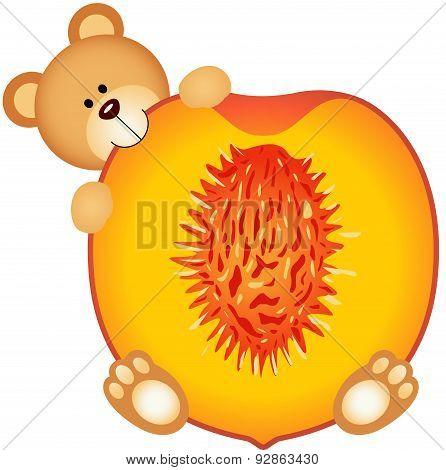 Teddy bear eating a peach slice