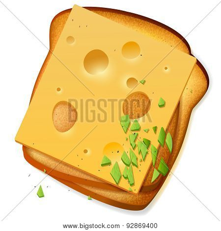 Toasted Bread Slices With Cheddar Cheese