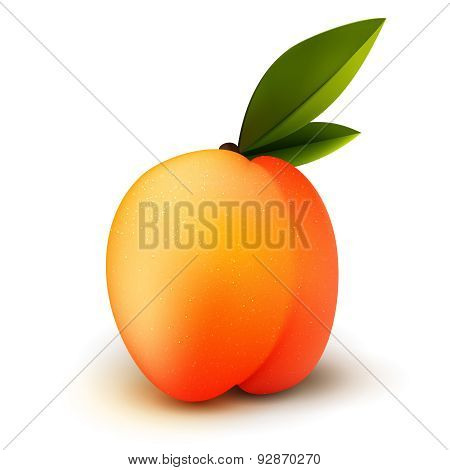 Ripe Isolated Peach Fruit
