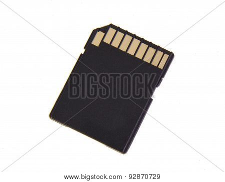 SD memory card isolated on a white background