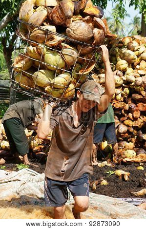 Asian Worker, Coconut Fiber Industry, Vietnamese