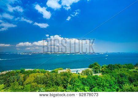 Bosphorus Bridge and the ships