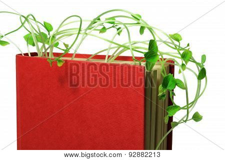 Book And Sprouts