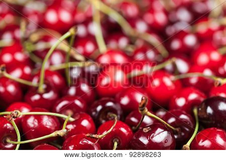 Background Of Juicy Cherry
