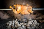 stock photo of briquette  - Cooking rotisserie chicken on the grill with Charcoal and Briquettes in the professional steak house or barbecue restaurant - JPG