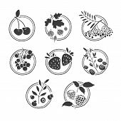 stock photo of rowan berry  - Set of monochrome logos - JPG