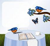 foto of orange blossom  - Pair of orange and blue birds - JPG