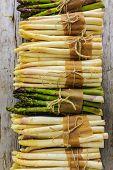 picture of white asparagus  - Asparagus  - JPG