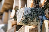 picture of firewood  - Pile of birch tree logs for firewood - JPG