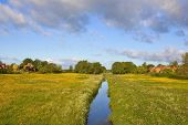 stock photo of buttercup  - a stream running through water meadows in the rural village of stillingfleet yorkshire england with yellow buttercups under a blue sky in summer - JPG