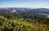 stock photo of marines  - View of Marin County covered by heavy fog under a blue sunny day - JPG
