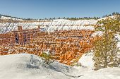 picture of hoodoo  - Fresh snow decorates the hoodoos in Bryce National Park and leaves a blanket around the edges of the canyon to create a beautiful scene - JPG