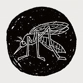 foto of gnat  - Mosquito Doodle - JPG