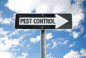 foto of pest control  - Pest Control direction sign with sky background - JPG