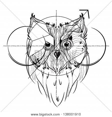 Bird head triangular icon , geometric trendy line design. Vector illustration ready for tattoo or coloring book. Wild eagle owl low-poly sketch hand drawn