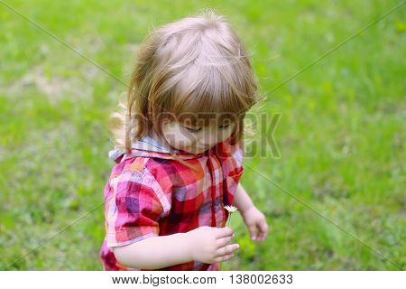 small boy child with happy face and long blonde hair in checkered red shirt on fresh green grass in lawn on natural background
