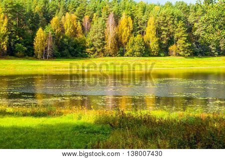 Autumn bright landscape of Soroti river and autumn forest trees in Pushkinskiye Gory Russia - autumn colored landscape of autumn forest nature lit by bright autumn sunlight. Soft focus applied