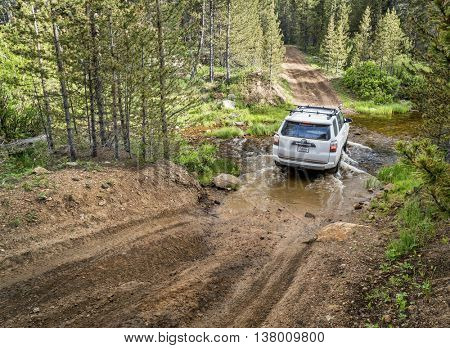 RED FEATHER LAKES, CO, USA - JUNE 3, 2016: New Toyota 4Runner SUV (2016 Trail edition) crossing a mountain stream - Sand Creek Road in Colorado's Rocky Mountains