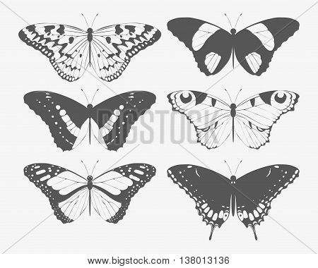 Vector set of high detailed butterfly silhouettes