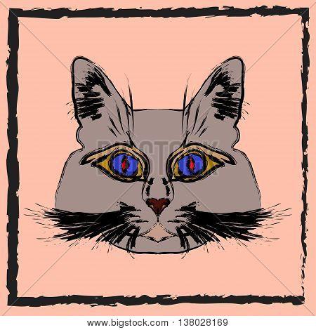 Cute gray cat. Muzzle cartoon cat in a box