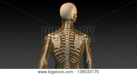 Radiography Scan with Bones as a Science Concept 3D Illustration Render