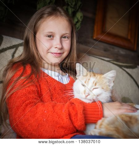 Affectionate cat on hands at the girl.