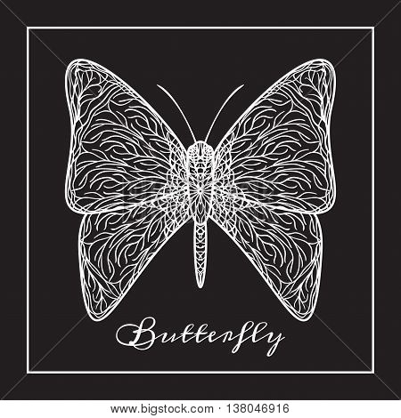 Vector illustration of hand drawn white butterfly on dark background