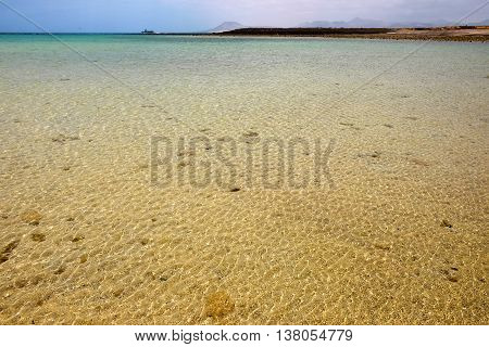 View on a lagoon with crystal ocean water and volcanic rocks on the Canary island Lobos Spain.
