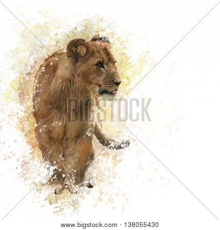 digital painting of  Lion Cub