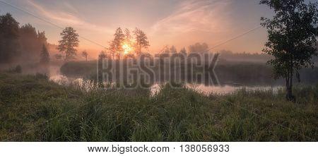Summer misty sunny morning, misty morning on the lake