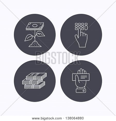 Cash money, cheque and profit icons. Enter code linear sign. Flat icons in circle buttons on white background. Vector