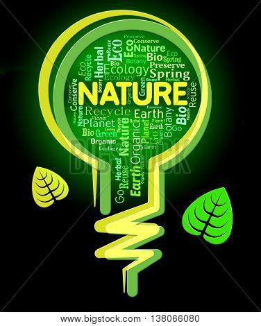 Nature Words Shows Light Bulb And Environment