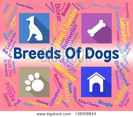 Breeds Of Dogs Represents Puppy Pups And Reproduce