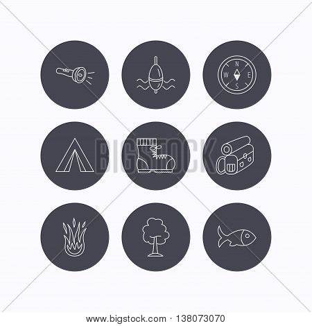 Maple tree, fishing float and hiking boots icons. Compass, flashlight and fire linear signs. Camping tent, fish and backpack icons. Flat icons in circle buttons on white background. Vector