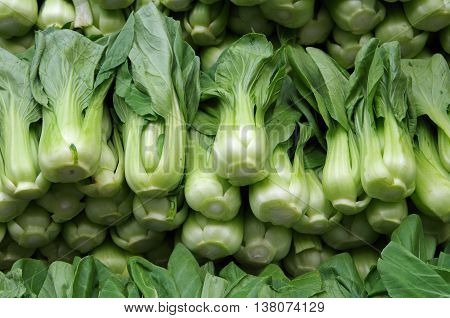 Fresh green bok choy neatly stacked ready for market