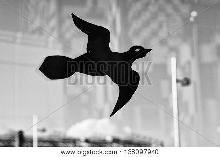 Protectionfor Bird  From Hitting Glass. Sticker Of Bird Predator