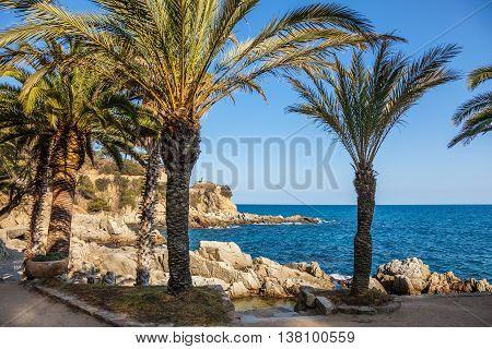 Idyllic Cala Banys at Lloret de Mar Costa Brava can be reached by a coastal path along the rocks.