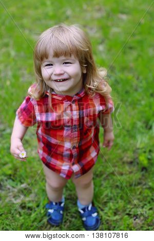 small boy child with happy smiling face and long blonde hair in checkered red shirt on fresh green grass in lawn on natural background