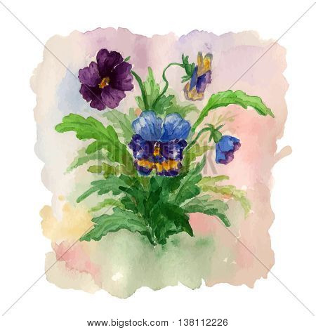 Summer bouquet of flowers pansies. Illustration for greeting card.