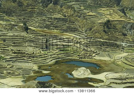 Colca canyon in the Andes,Peru