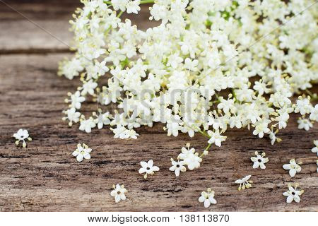 Bunch of white flowers on wooden background, copyspace. Closeup of spring blossom on wood. Natural rustic composition with elderberry flowers
