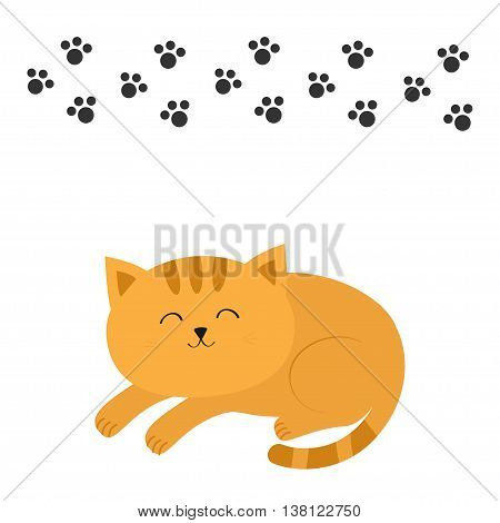 Cute lying sleeping orange cat with moustache whisker. Funny cartoon character. Black animal paw print. White background. Isolated. Flat design. Vector illustration