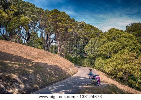 Wellington New Zealand - March 2 2016: Local people resting at Wellington Botanic Garden the largest public park in town