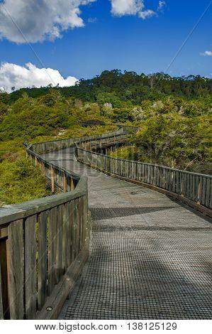 Walkway to Whakarewarewa Geyser at Te Pui thermal park in geothermal valley of Rotorua New Zealand