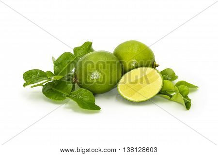 Kaffir Lime Leaves and limes on white background. herb and sour ingredients for making Thai food
