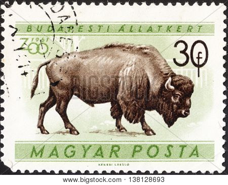 MOSCOW RUSSIA - DECEMBER 2015: a post stamp printed in HUNGARY shows an American bison the series