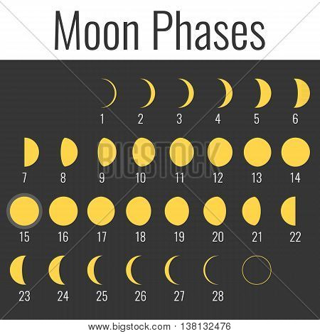 Vector moon phases icon , flat design
